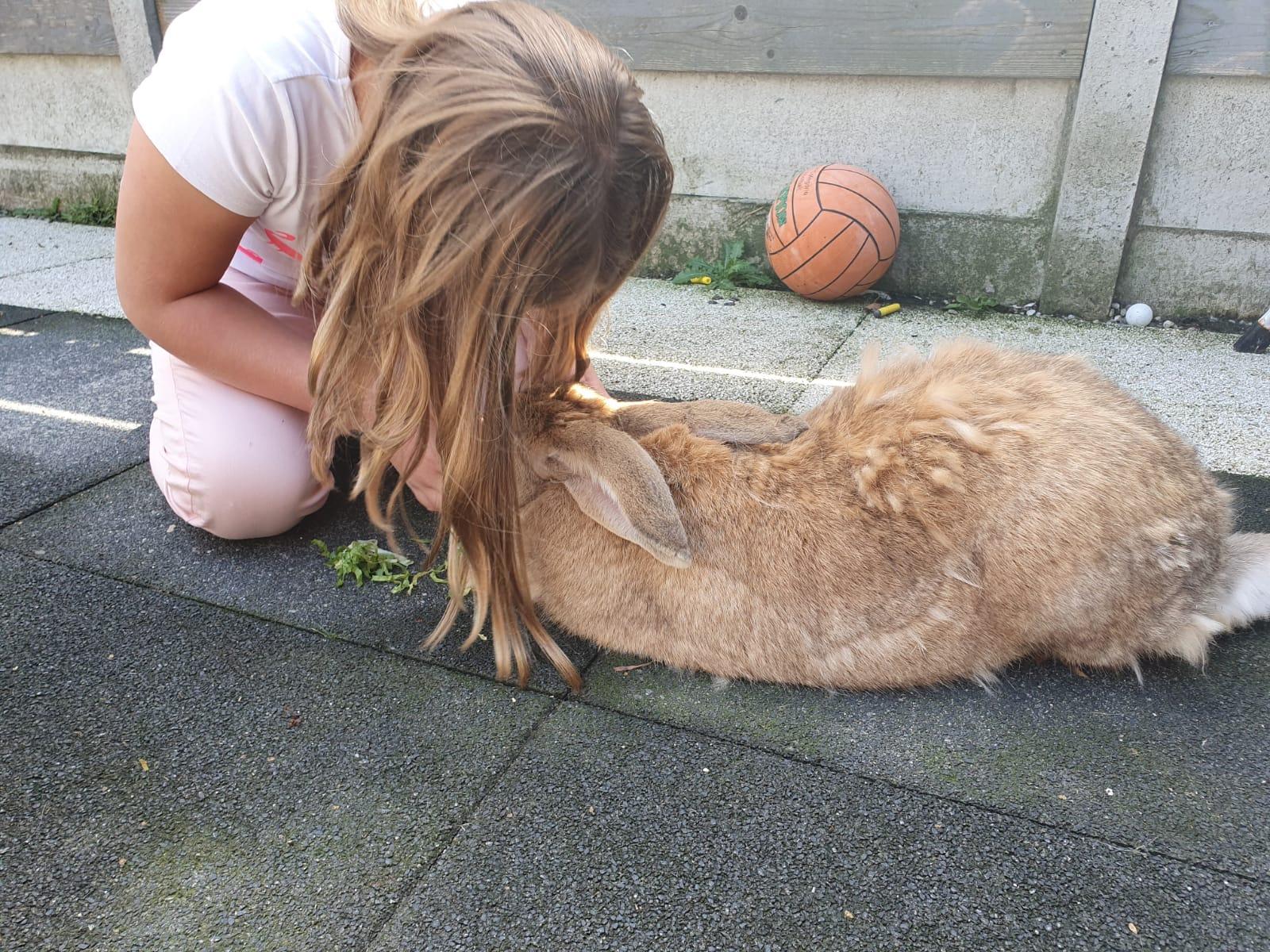 Lilly speelt met haar konijn om rustig te worden