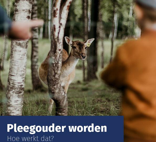 Folder-Pleegouder-worden-Sterk-Huis