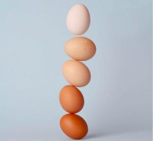 balancerende-eieren
